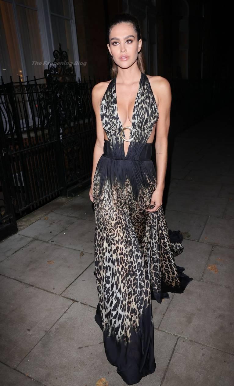 Amelia Gray Hamlin Dress 3