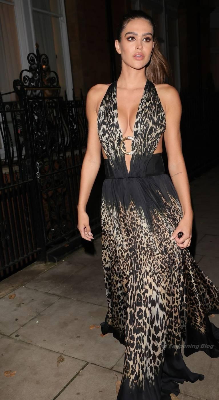 Amelia Gray Hamlin Dress 4