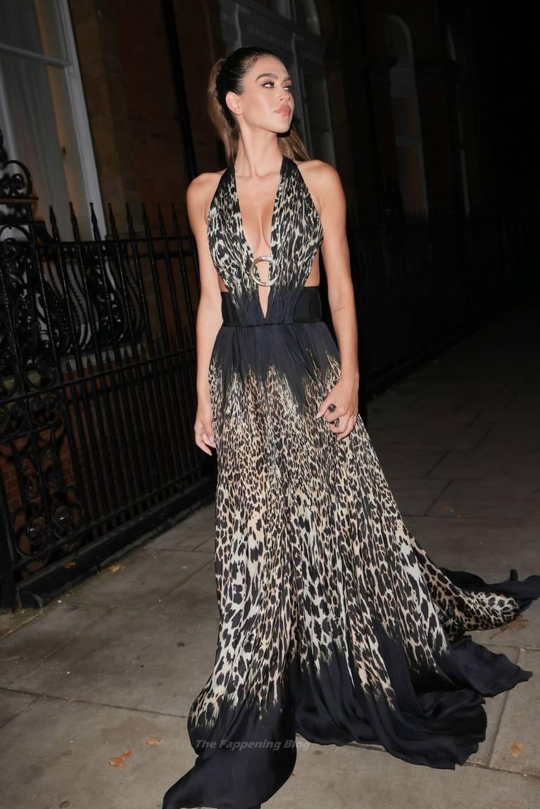 Amelia Gray Hamlin Dress 5