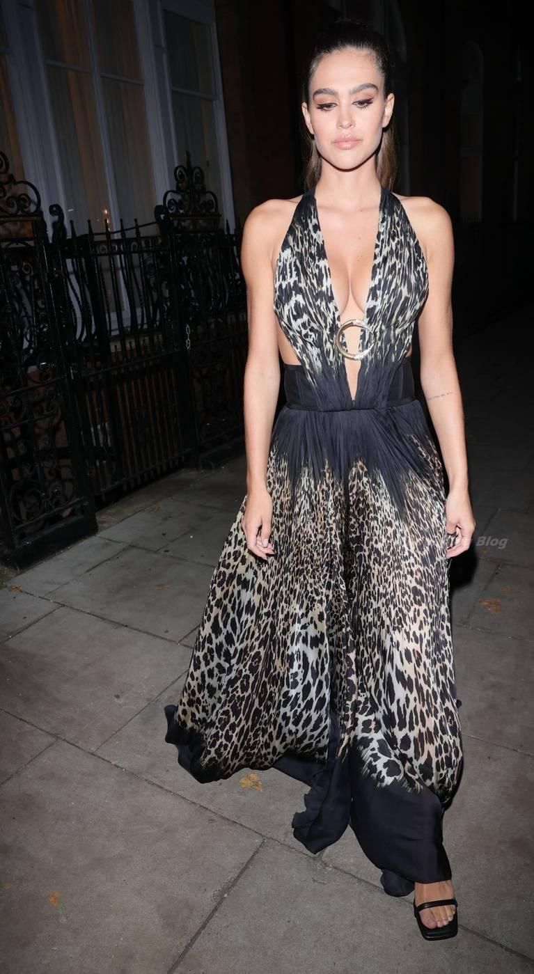Amelia Gray Hamlin Dress 6