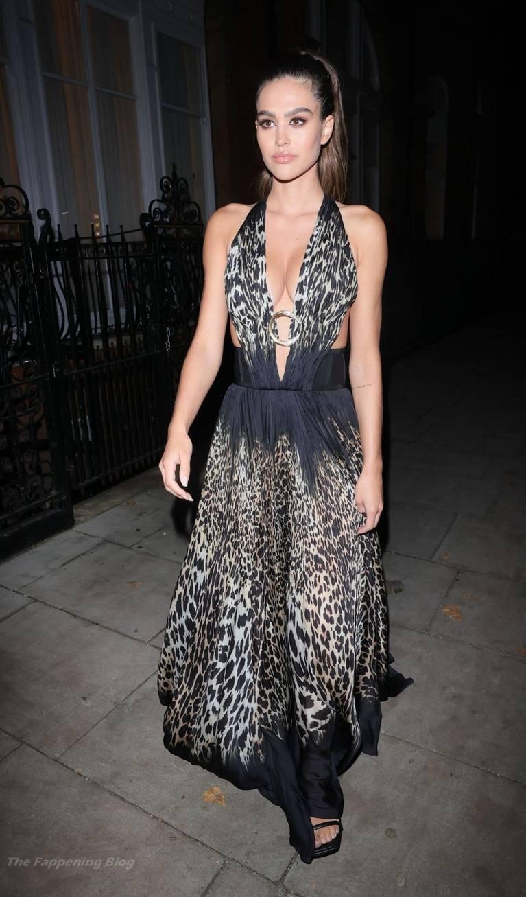 Amelia Gray Hamlin Dress 7