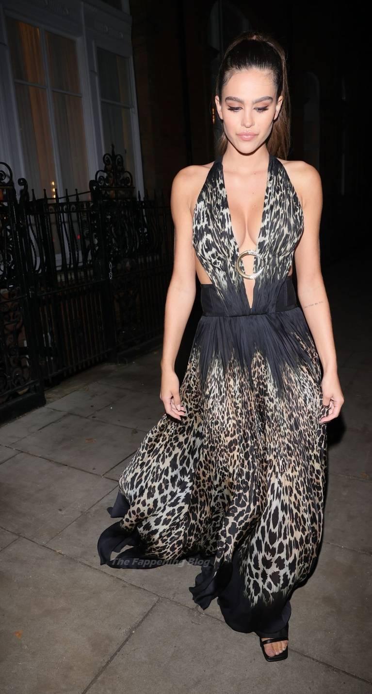 Amelia Gray Hamlin Dress 10