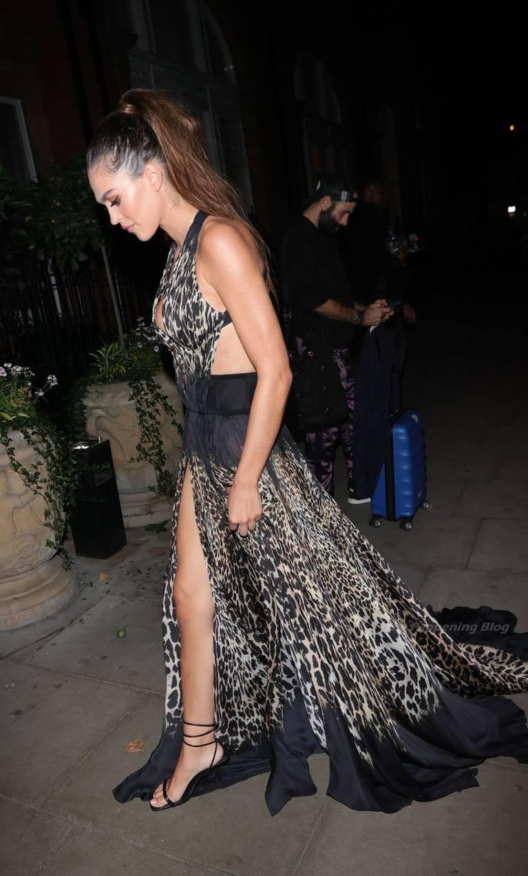 Amelia Gray Hamlin Dress 14