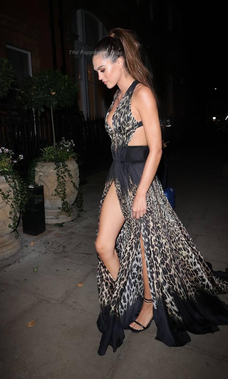Amelia Gray Hamlin Dress 15