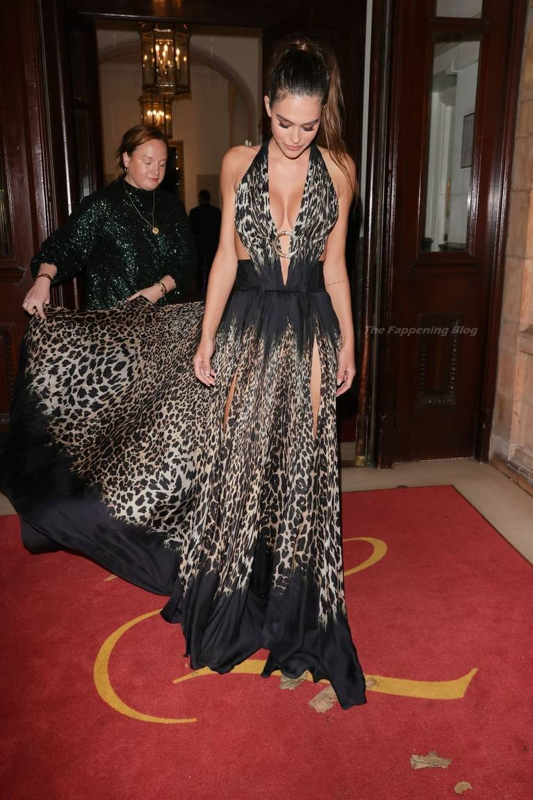 Amelia Gray Hamlin Dress 16