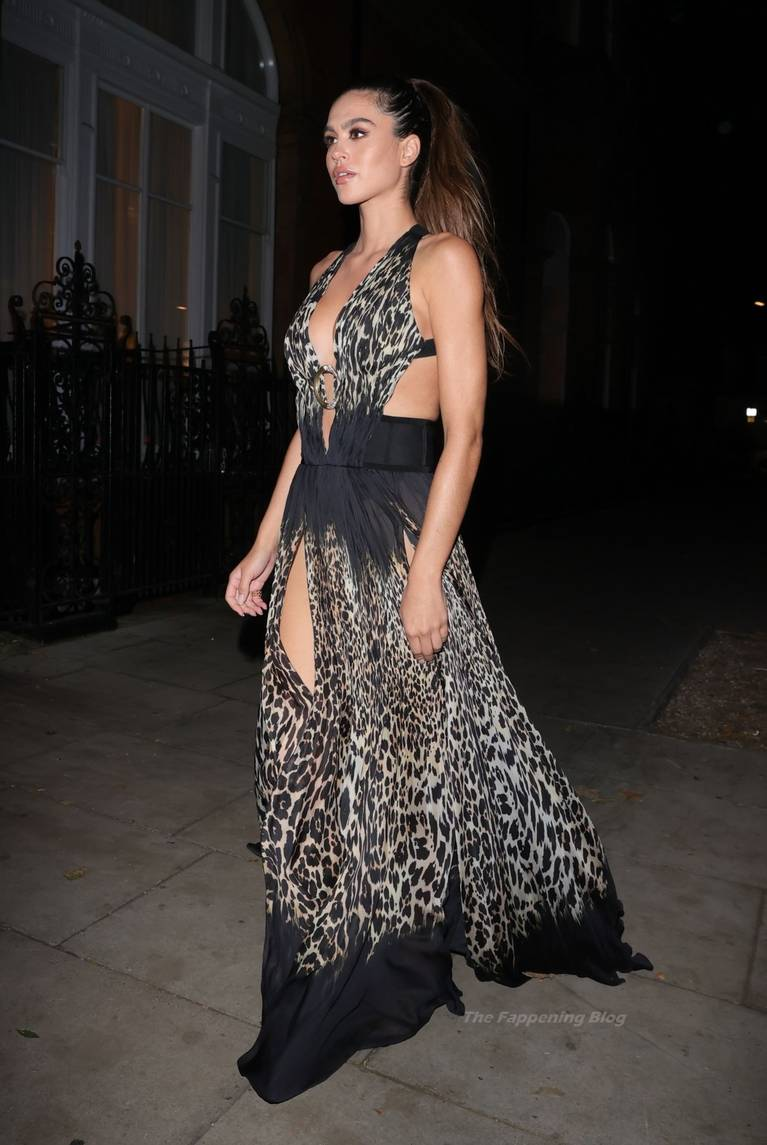 Amelia Gray Hamlin Dress 17