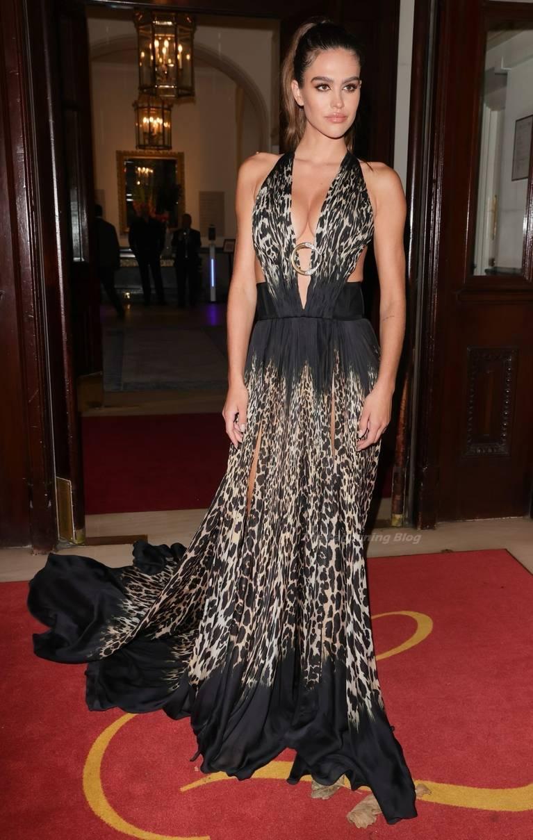 Amelia Gray Hamlin Dress 20