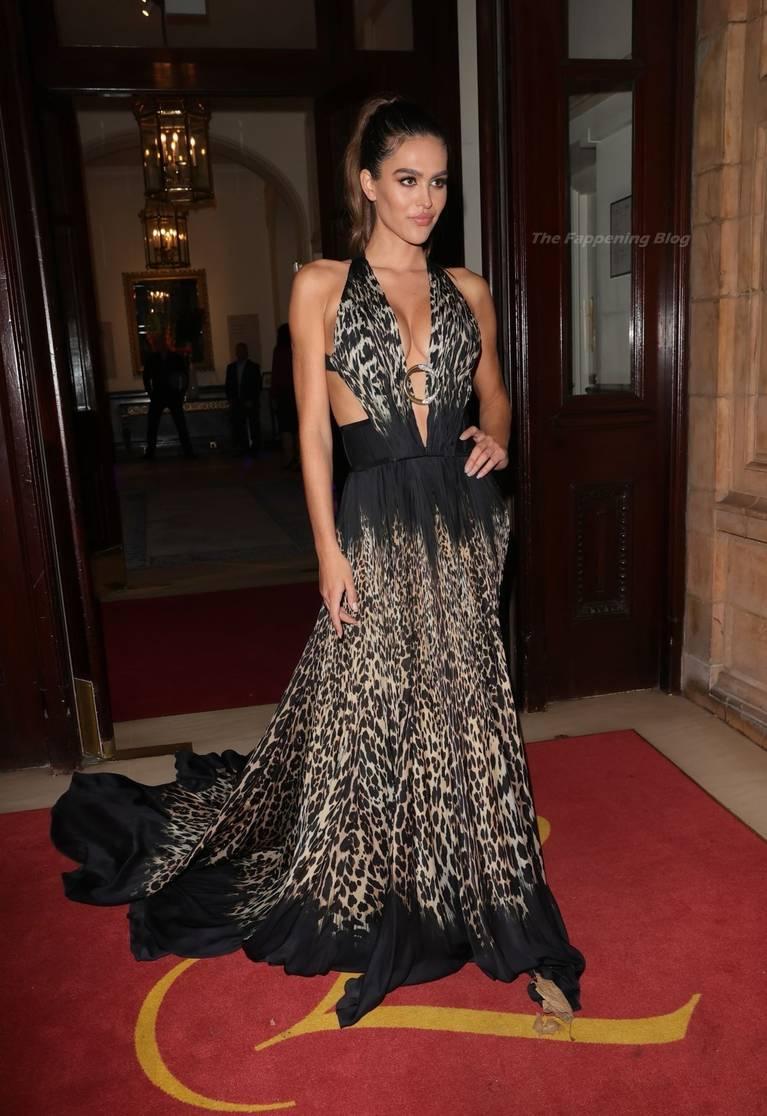 Amelia Gray Hamlin Dress 23
