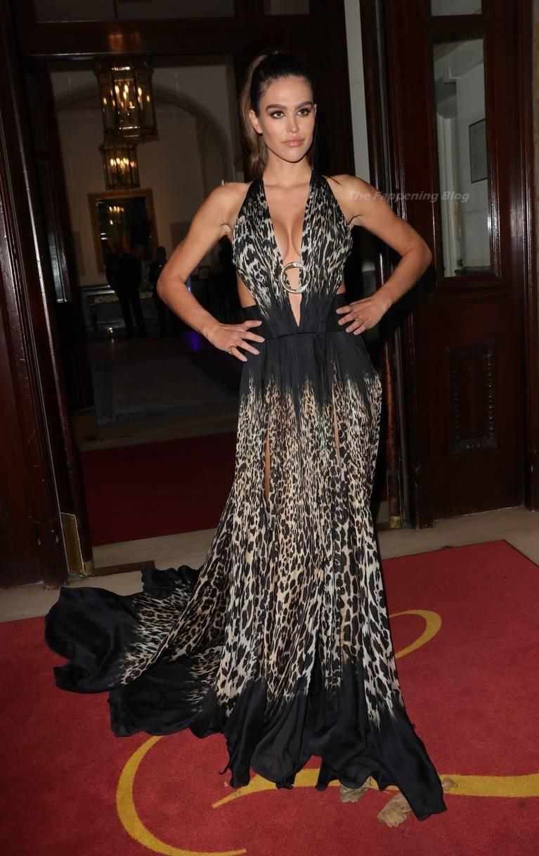 Amelia Gray Hamlin Dress 24