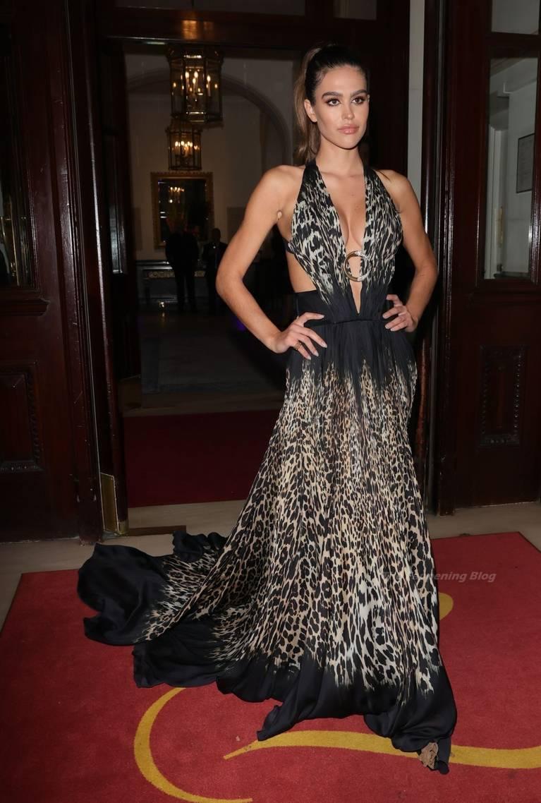 Amelia Gray Hamlin Dress 26