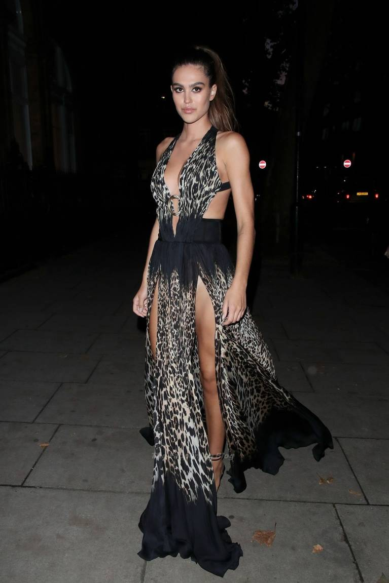 Amelia Gray Hamlin Dress 29