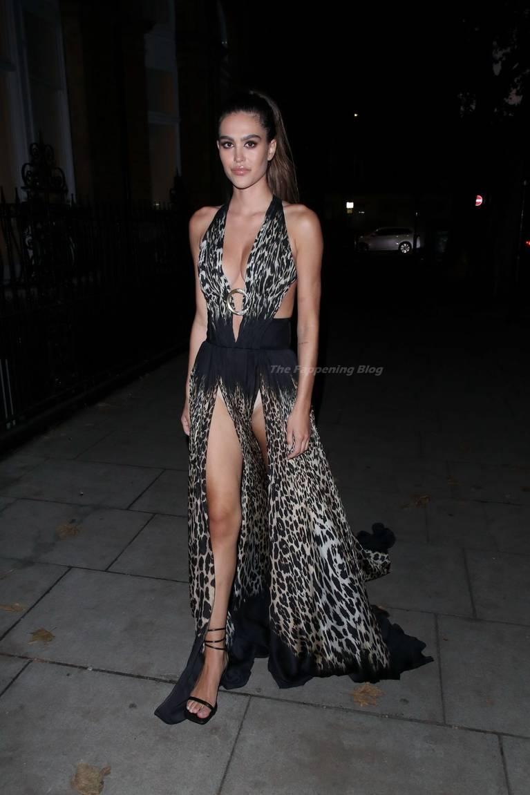 Amelia Gray Hamlin Dress 31