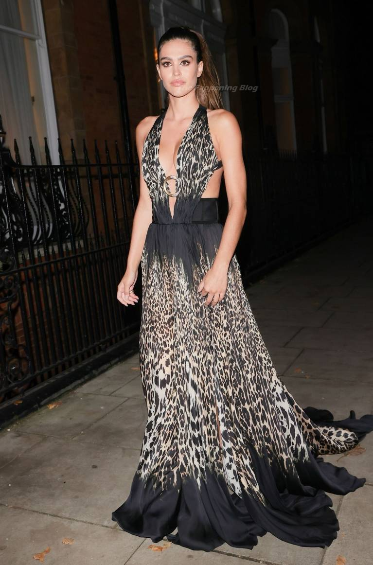 Amelia Gray Hamlin Dress 37