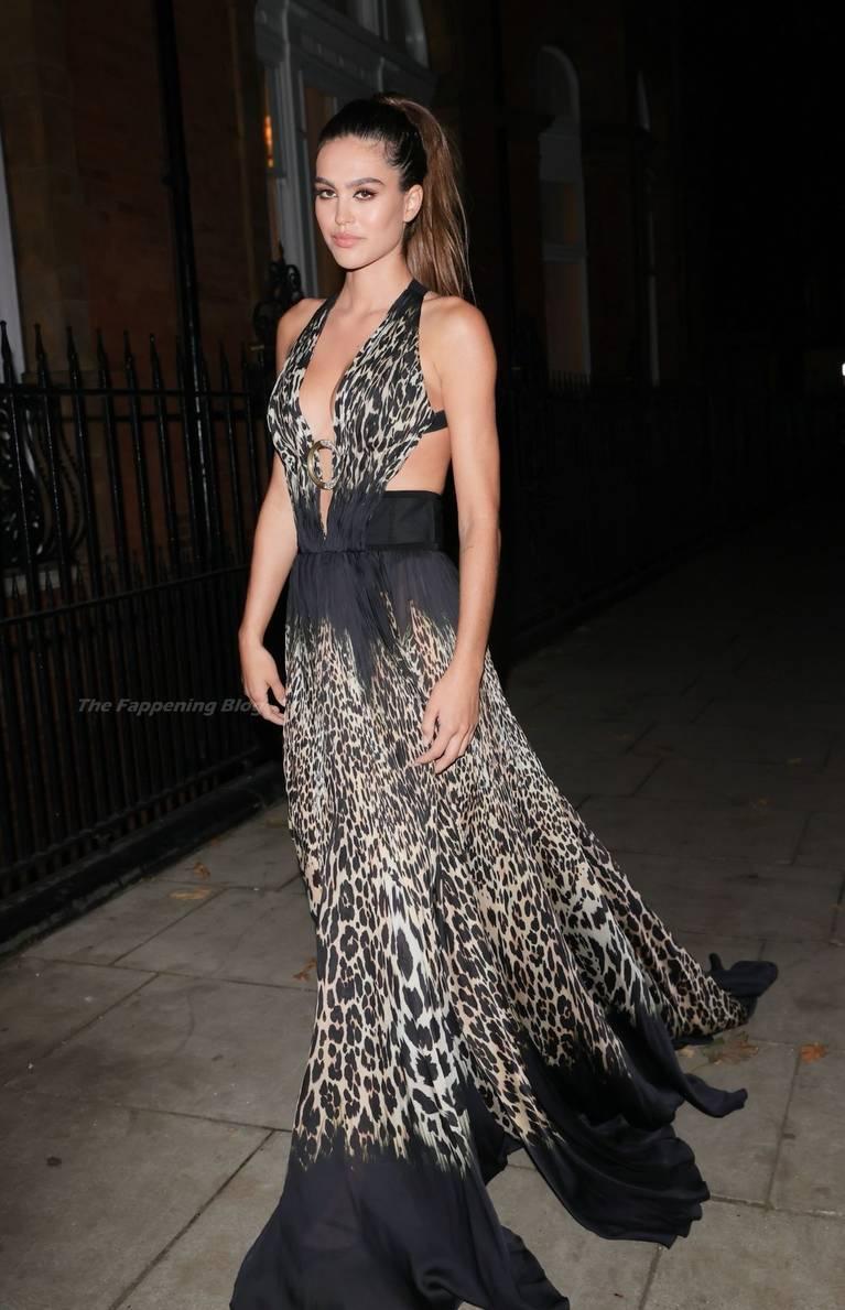 Amelia Gray Hamlin Dress 38