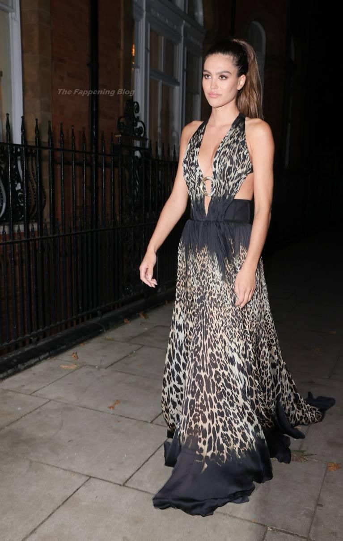 Amelia Gray Hamlin Dress 39