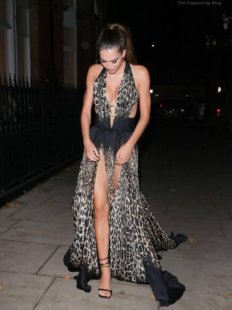 Amelia Gray Hamlin Dress 41