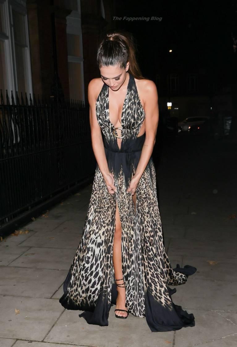 Amelia Gray Hamlin Dress 42