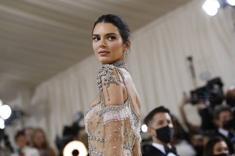 Kendall Jenner Naked Dress 3