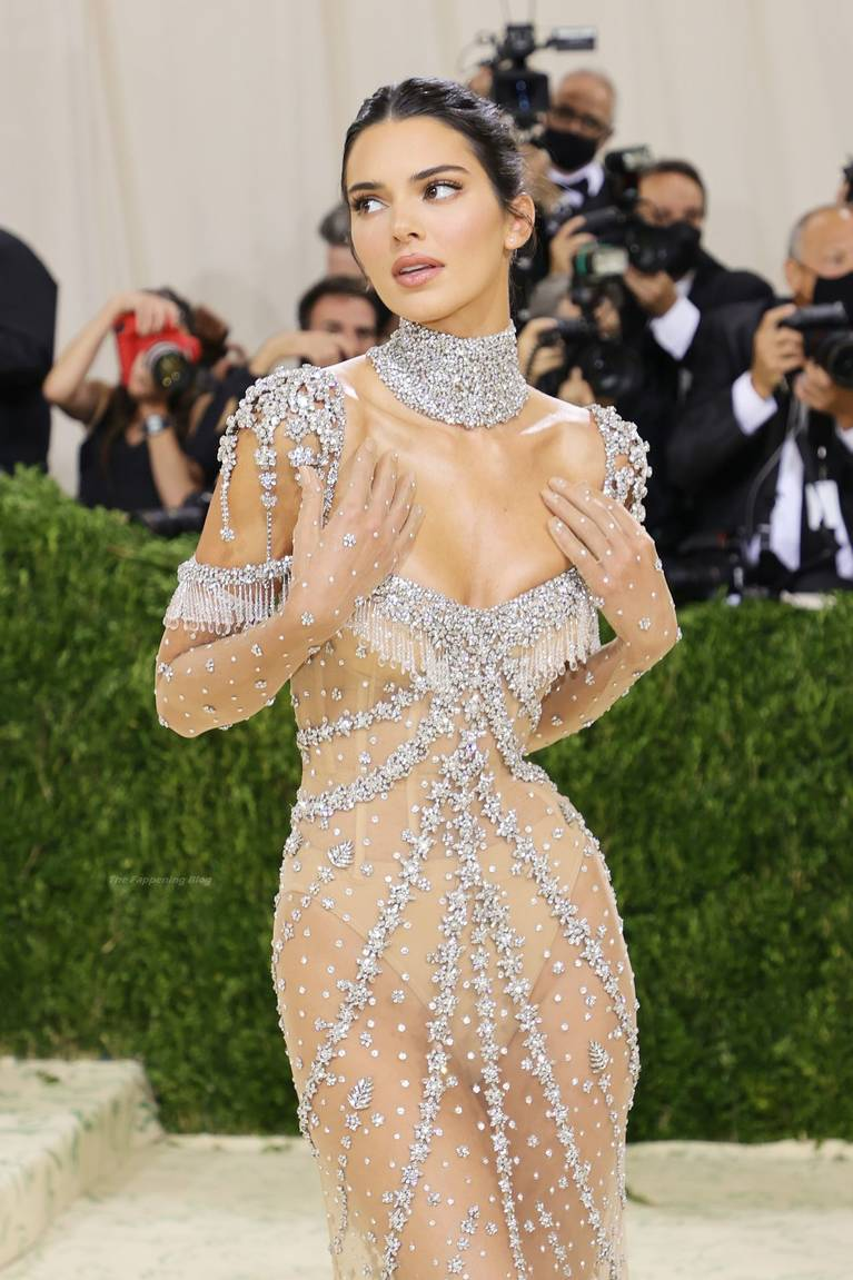 Kendall Jenner Naked Dress 8